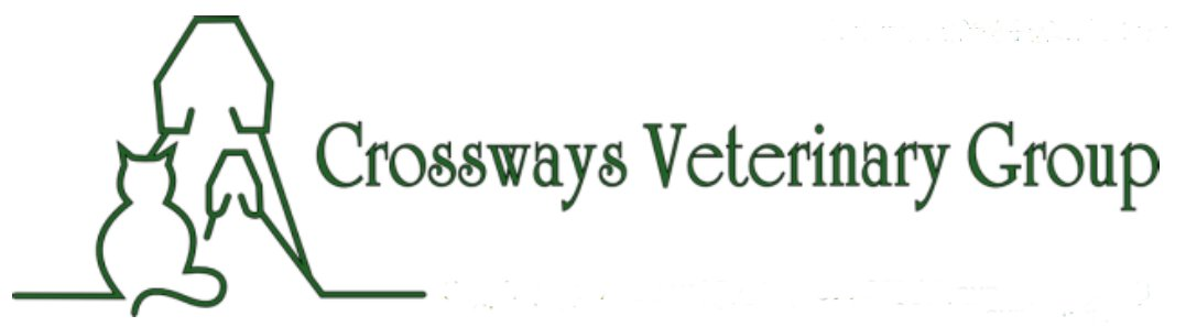 Veterinary Services, Vets, dogs, cats, domestic pets, flea, worms, vaccination, surgery,  Pulborough, Ashington, Thakeham, Fittleworth, Storrington, Petworth, Billingshurst, Southwater, Slinfold, Steyning, Findon