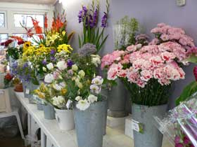 Florists, Nurseries, Flower delivery, bouquets, West Chiltington, Storrington, Thakeham, Ashington, Fittleworth, Pulborough, Bury, Coldwaltham, Billingshurst, Wisborough Green,sussex